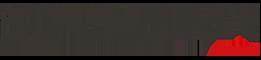 singular fest logo